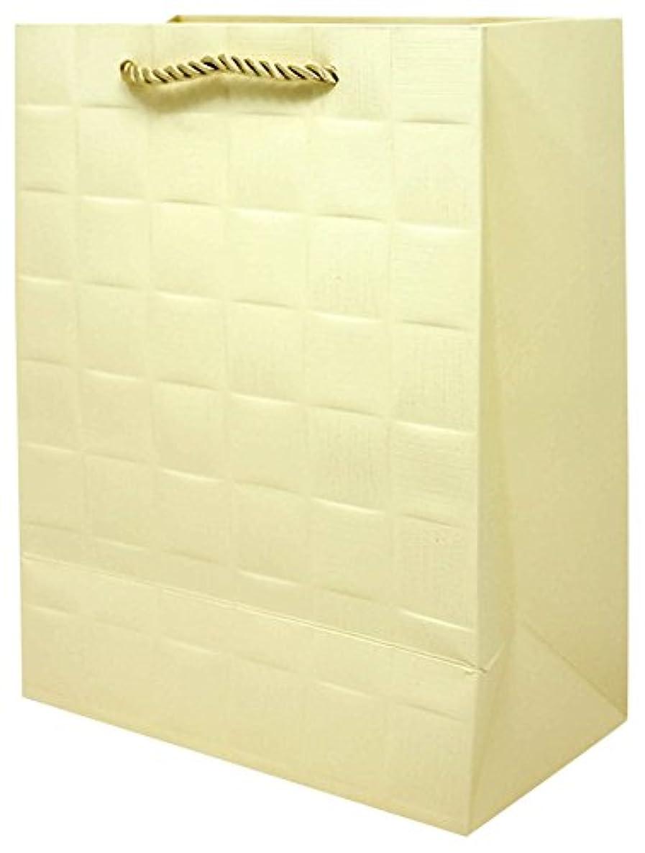 Singular Metallizing Square Embossed Vertical Paper Bag, Shopping Bag, Retail Bag with Rope Handle (Set of 12) (Small Size (7