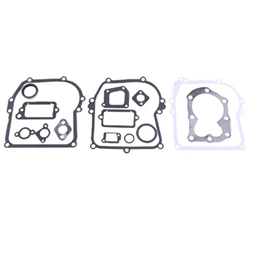 Plastic Engine Refit Gasket Set for Briggs & Stratton Replaces # 794209, 699933, 298989