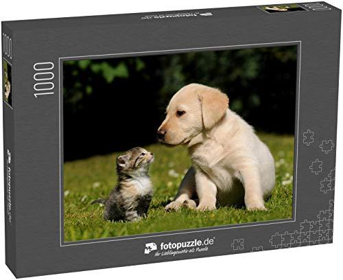 Puzzle 1000 Teile Katze und Hund - Klassische Puzzle, 1000/200/2000 Teile, in edler Motiv-Schachtel, Fotopuzzle-Kollektion 'Tiere'