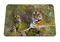 26cmx21cm マウスパッド (タイガースカップル草嘘残り大きな猫捕食者) パターンカスタムの マウスパッド