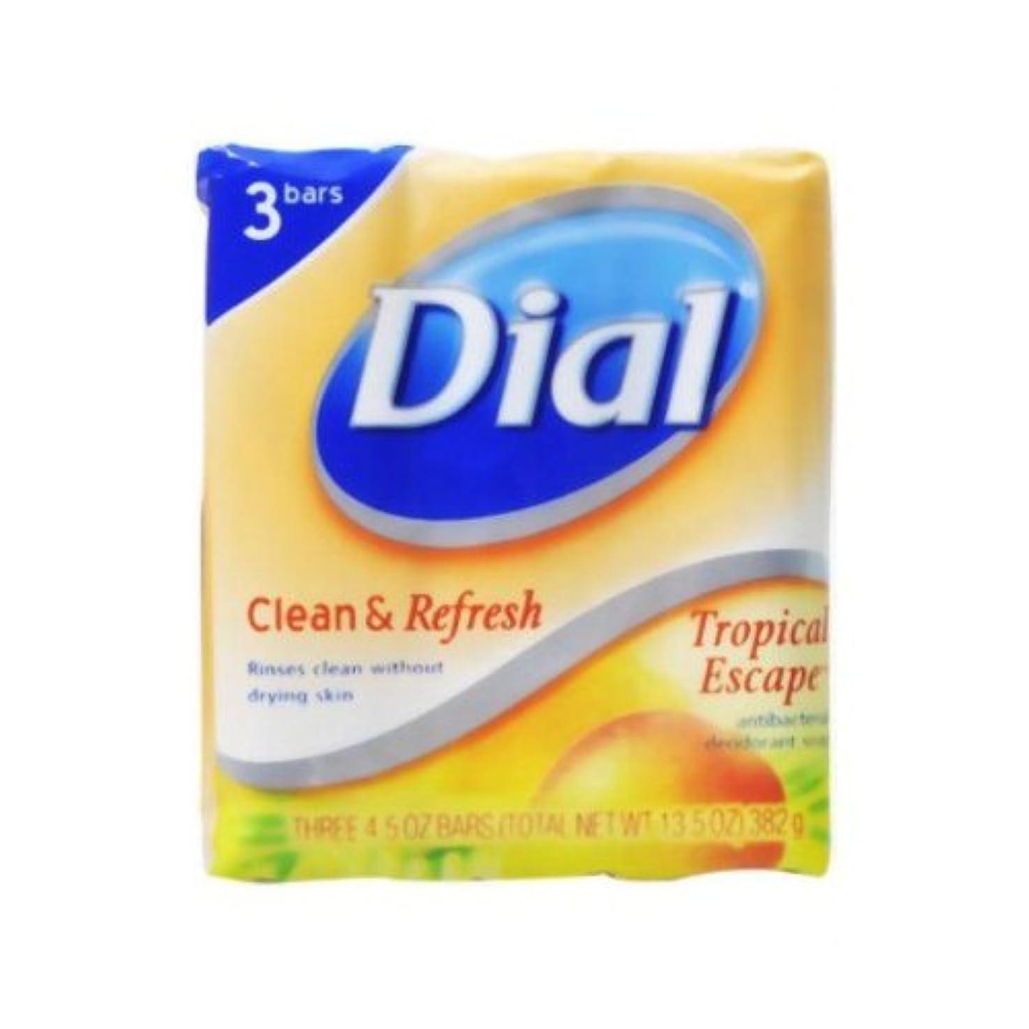 詳細にバブル有力者【DIAL】ダイアル デオドラント石鹸 トロピカルエスケープ 3個パック