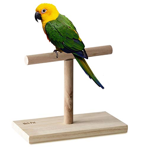 Mrli Pet Bird Training Stand, Parrot Tabletop Training Perch, Natural Wood T Shape Bird Stands for Conures Parakeets Lovebirds Cockatiels