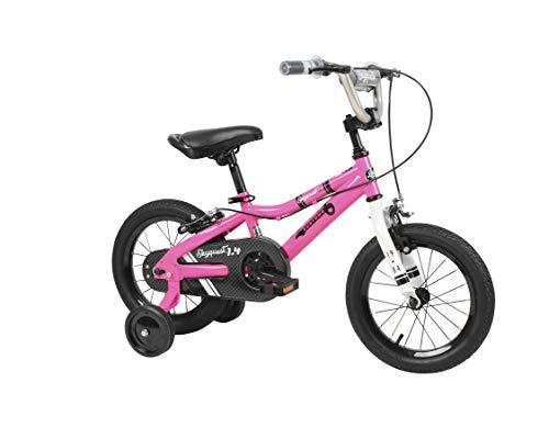 custom bycicles - 3