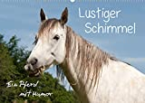 Lustiger Schimmel - ein Pferd mit Humor (Wandkalender 2022 DIN A2 quer)