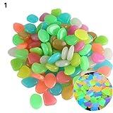 TOMHY Nueva decoración del Acuario 10Pcs Respetuoso del Medio Ambiente Luminoso Que Brilla Piedra Artificial Peces de Acuario Tanque de Bonsai Decoración: Multicolor