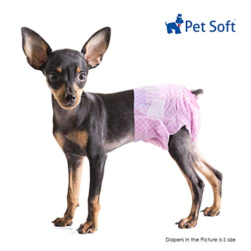 Female Dog Diaper Without Tail Hole