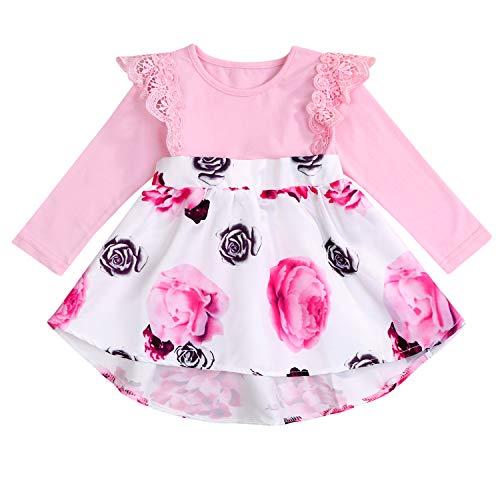 Newborn Infant Baby Girls Floral Dress Flutter Lace Sleeve Skirts Ruffle Dresses Summer Outfits (Pink # Long Sleeve, 0-3 Months)