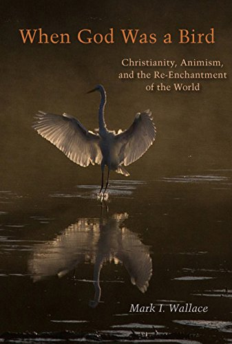 When God Was a Bird: Christianity, Animism, and the Re-Enchantment of the World (Groundworks: Ecological Issues in Philosophy and Theology)