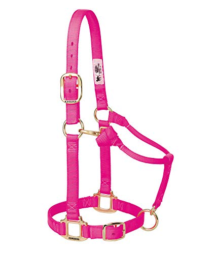 Weaver Leder Original Verstellbare Nylon Pferd Halfter, 35-7035-DP, Diva Pink, 1 Inches Average Horse