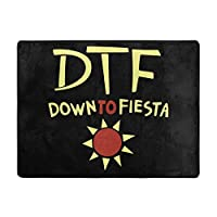 Dtf Down To Fiesta カーペット ラグ ラグマット フランネル 抗菌・防ダニ加工 滑り止め付 防音 遮音 ふわふわ マイクロファイバー オールシーズン 120*160cm