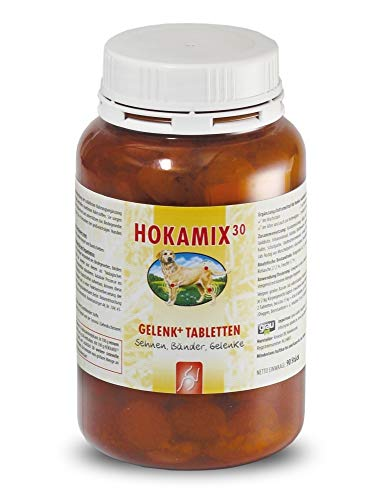Hokamix - Tabletas articuladas + pastillas (90 unidades), color gris