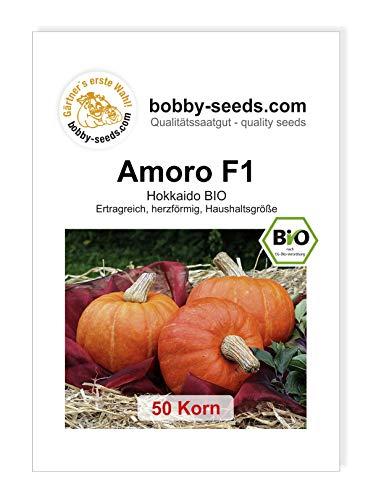 Amoro F1 BIO Kürbissamen von Bobby-Seeds 50 Korn