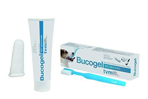 dentifrice pour chien leclerc