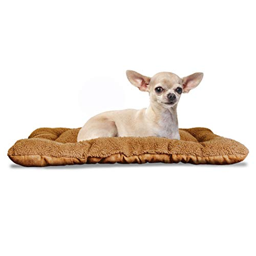Dog Pads Vs Bed Pads