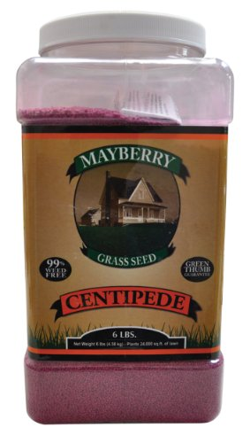 Mayberry Centipede Seed, 6-Pound