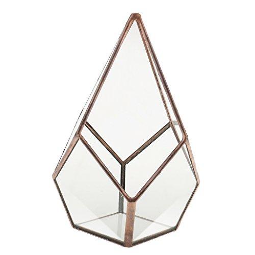joyMerit Weinlese Tischplatten Luft Pflanzer Saftiger Diamant Geometrische Terrarium Glaskästen - Kupfer