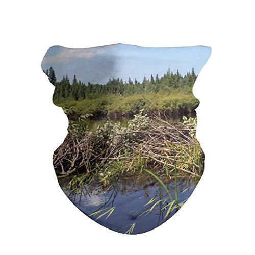 HAOZI Lot de 2 Bandeaux pour Homme et Femme, Beaver Dam, 50 CM x 25 CM