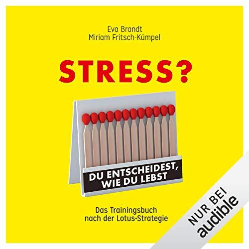 Stress? Du entscheidest, wie du lebst cover art
