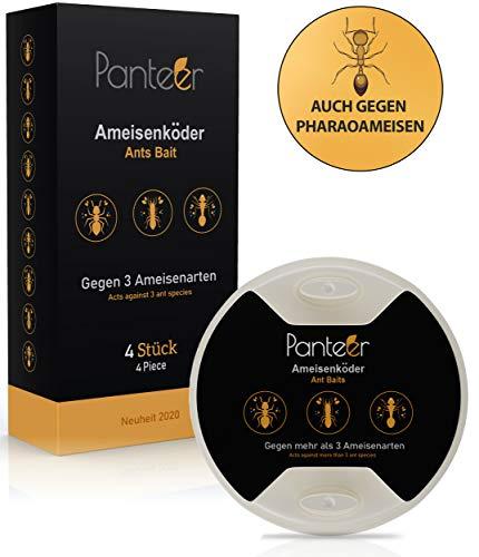 Panteer ® Ameisenköderdose - 4 Ameisenköder - Einfach Ameisen bekämpfen mit Ameisengift - Gegen mehr als 3 Arten, auch gegen Pharaoameisen - Für innen und bei Ameisen im Rasen