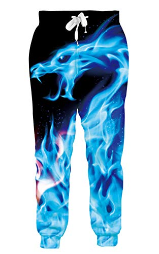 Goodstoworld Men Women Hip Hop Sweatpants 3D Dragon Jogging Pants Cool Casual Running Animal Teen Pants for Boys Girls Tracksuit Clothing