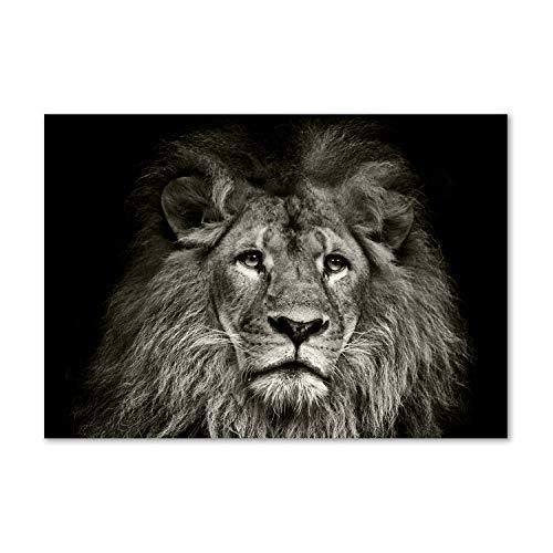 Tulup Glas-Bild Wandbild aus Glas - Wandkunst - Wandbild hinter gehärtetem Sicherheitsglas - Dekorative Wand für Küche & Wohnzimmer 100x70 - Tiere - Löwe - Schwarzweiß