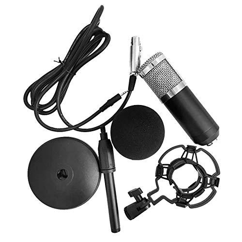 QinWenYan Microfoon, draagbaar, ruisonderdrukking, hoge gevoeligheid, microfoon met laag volume, set voor mobiele telefoons voor computer Studio Live Broadcast.
