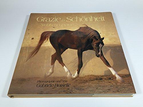Grazie und Schönheit arabischer Pferde