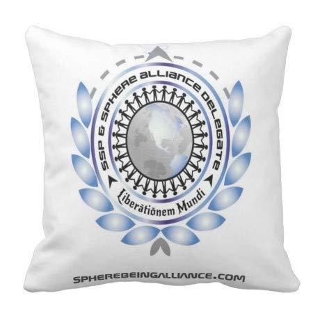 Perfecone Home Improvement SBA - Funda de almohada para sofá y coche (1 unidad), 45 x 45 cm
