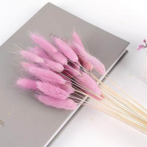 60 stuks/set met natuurlijke kleurverloop, gedroogde bloemen, bruiloft, Pasen, decoratie, hazenstaart, kruiden, echte bloemen Roze Paars