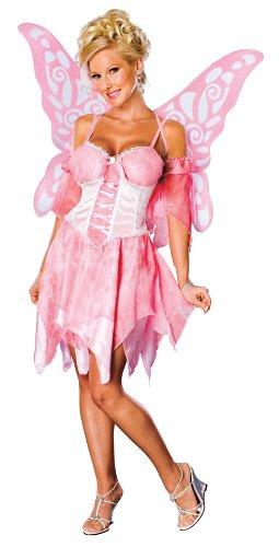 Secret Wishes Sugar Plum Fairy Costume With Wings, Pink, Medium (6/10)