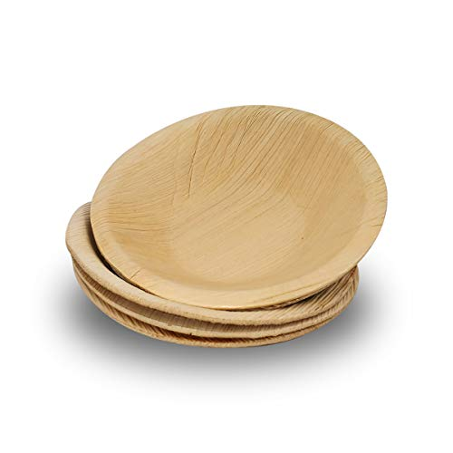 Biodegradable Compostable Disposable Dinnerware Set for Wedding Plastic  Organic Wooden Birthday Party- Sturdy Like Bamboo Dtocs Palm Leaf Plates 9 Inch Round Eco-Friendly Camping Pack 50