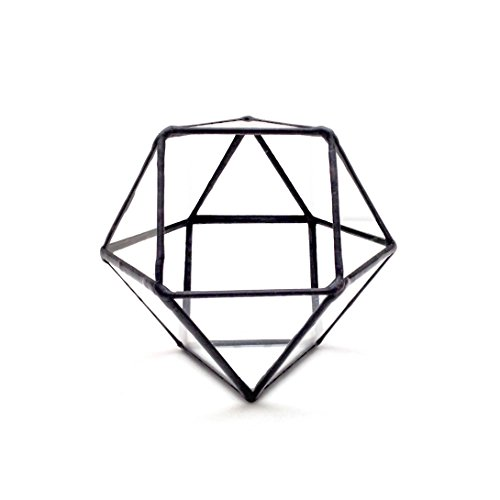 Cubitronqué Terrarium/géométrique en verre Pot de fleurs/pot de fleurs moderne/fait à la main en Angleterre L noir