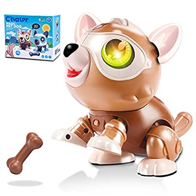 Chalpr Toys for 3-12 Year Old Boys or Girls, STEM DIY Robot Dog, Electronics Robot Puppy Robo Pets with RGB Light Flashing Eye & Touch Control, Educational Interactive Gift for Kids