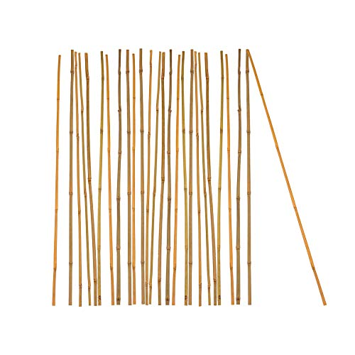 25x Pflanzstab Bambusstab 105 cm x 8-10 mm Bambus Rankhilfe Pflanzstab Tonkinstab 100% Naturprodukt Pflanzstäbe Bambusstäbe Bambusstangen