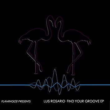 Find Your Groove EP