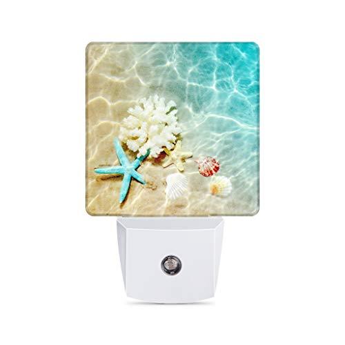 Starfish Coral and Seashell Plug-in Night Light Dusk to Dawn Smart Sensor Decor Led Nightlight for Bedroom Bathroom Kitchen Hallway Stairs Hallway Energy Efficient