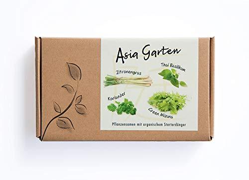 ASIA GARTEN Geschenkbox - Samen von 4 asiatischen Kräuter- und Gemüsesorten