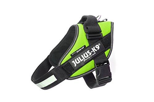 Julius-K9 16IDC-KW-0 IDC Powerharness, Dog Harness, Size 0, Kiwi