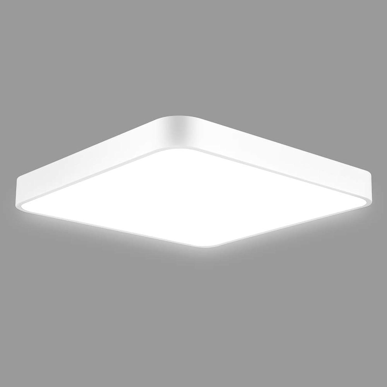 Dimmbare Deckenleuchte, 24W Ultraslim Dimmbar LED Deckenlampe für Badezimmer, Schlafzimmer, Küche, Balkon, Korridor, Büro, Esszimmer, Wohnzimmer