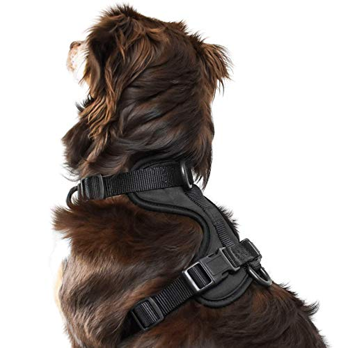 Prime Paw | Luxury for Your Pet | No Pull Dog Harness, Cushioned, Breathable, and Easy Walk Dog Harness, Adjustable, Light and Tactical Dog Vest for Walking Training Small Dogs, Black, S