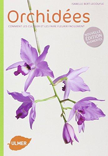 puissant Orchidées – un moyen facile de les cultiver et de les faire fleurir