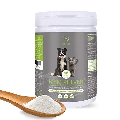 Nutrani MSM Pulver für Hund, Katze und Pferd | 500g – 100{09a780fc88d32e47a12cf2490fbb818be4ec0e2288ce5f8337fdf560070978f9} natürlicher organischer Schwefel (Methylsulfonylmethan) zur Unterstützung der Gelenke, Sehnen, Bänder + gepflegtes Fell