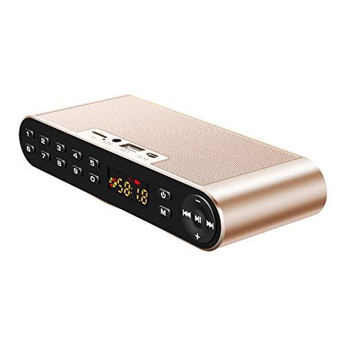 MYPNB Radio portátil, teléfono móvil del Altavoz de Bluetooth de Radio inalámbrica Ventilador insertado Subwoofer U Altavoz del Disco, for Caminar Que va de excursión (Color : D)