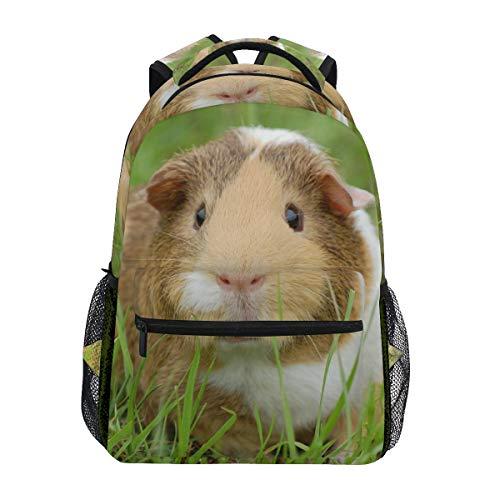 Backpacks Guinea Pig College School Book Bag Travel Hiking Camping Daypack