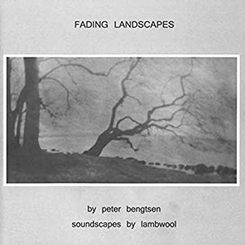 Fading Landscapes