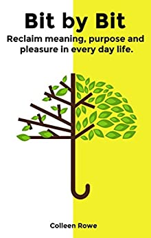 Bit by Bit: reclaim meaning, purpose and pleasure in everyday life by [Colleen Rowe]