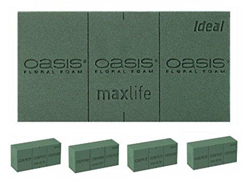 4 x Oasis® Ideal Briques de Mousse pour Fleurs fraîches, Mousse Florale