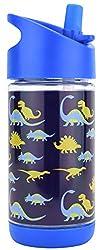 6. Kids Dinosaur Water Bottle with Straw, 12oz