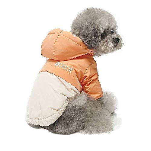 Dociote Hund Wintermantel Winterjacke mit Kragenloch & Kapuze Baumwolle Gepolstert Hundemantel Weste für kleine Hunde L Orange