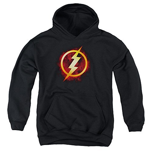 Youth Hoodie: The Flash- Incandescent Logo Pullover Hoodie Size YL